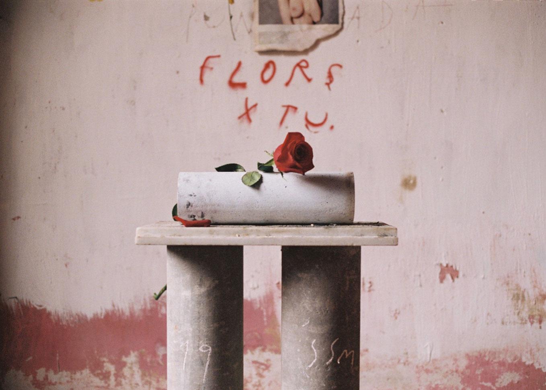 sergi serra mir flors x tu